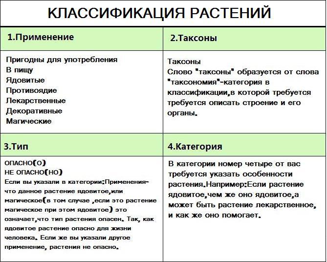 Персональный сайт - Лекция №1.